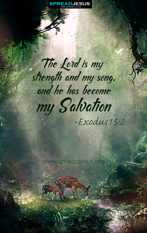 Bible Quotes Mobile WallpapersExodus 4040 Download The Lord Is My Stunning Bible Quotes Wallpaper