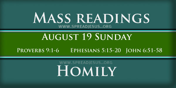 Homily for 20th Sunday