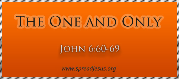 "Meditation On ""The One and Only"" John 6:60-69"
