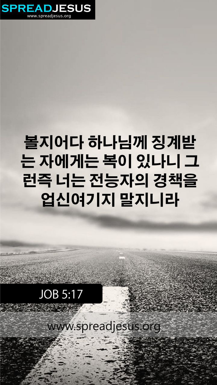 KOREAN BIBLE QUOTES JOB 517 WHATSAPP MOBILE WALLPAPER