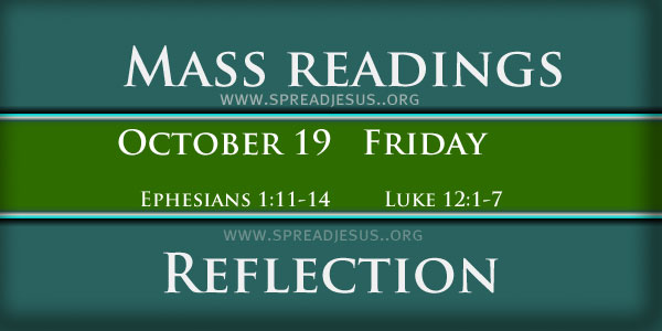 Catholic mass readings and Reflection October 19 Friday