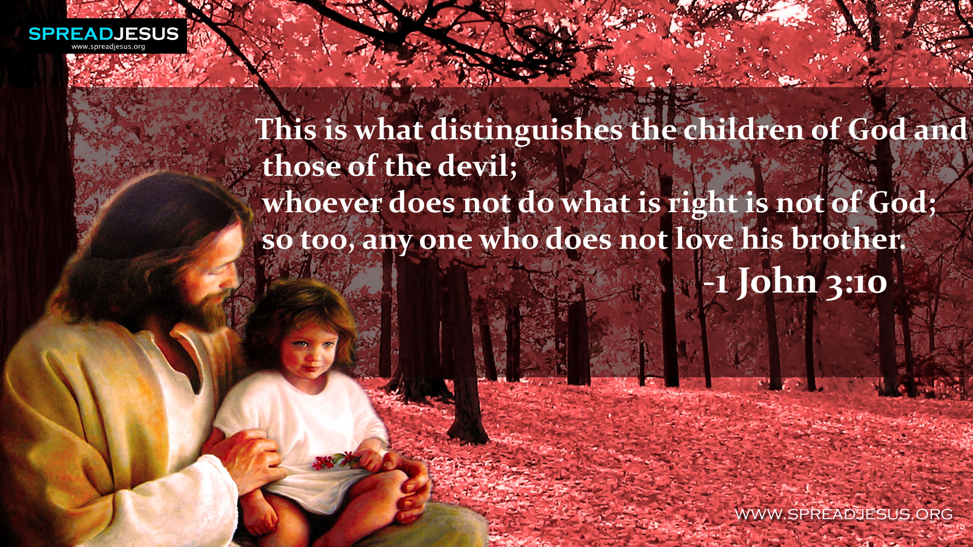 Jesu christ with children wallpapers BIBLE QUOTES-The children of God-This is what distinguishes the children of God and those of the devil; whoever does not do what is right is not of God; so too, any one who does not love his brother. -1 John 3:10