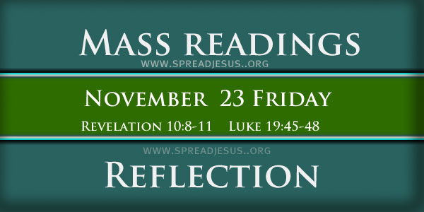 Mass Readings  November 23
