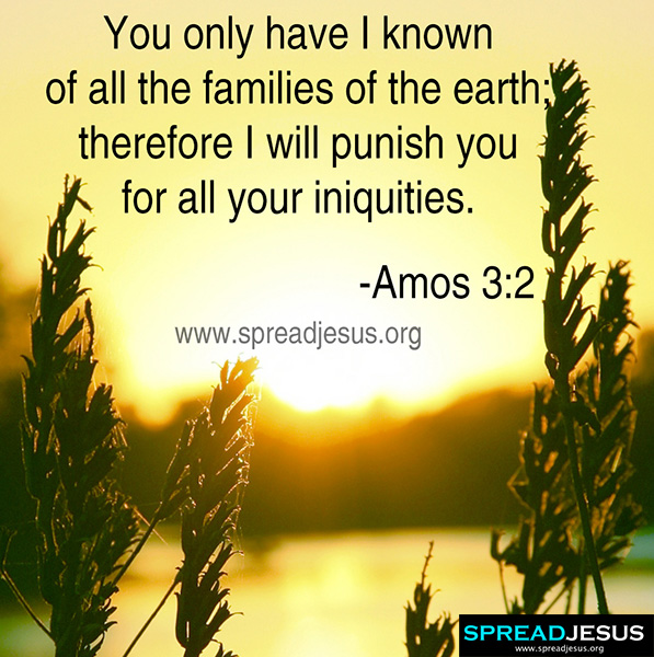 BIBLE QUOTES AMOS 3-2 You only have I known of all the families of the earth; therefore I will punish you for all your iniquities. -Amos 3:2