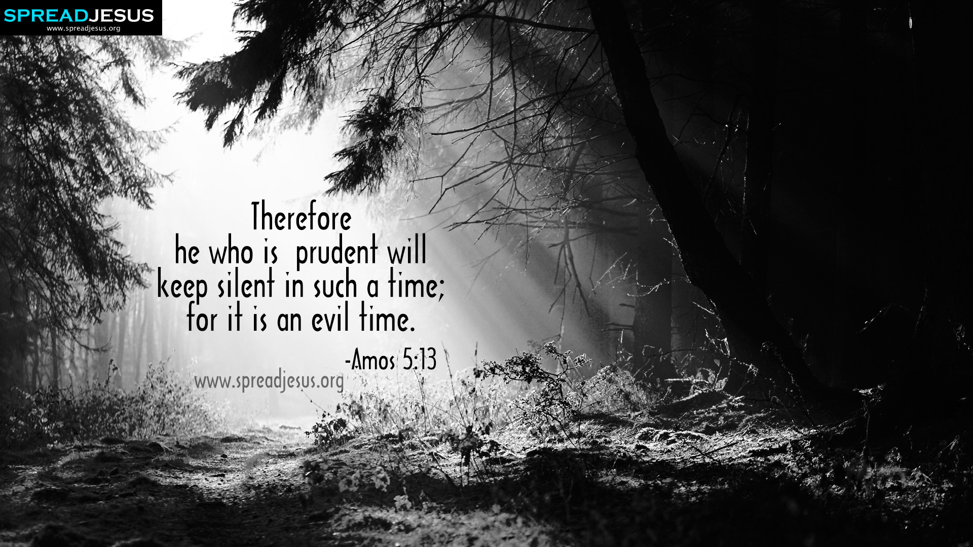 AMOS 513 BIBLE QUOTES HD WALLPAPERSFACEBOOK TIMELINE COVERS Therefore He
