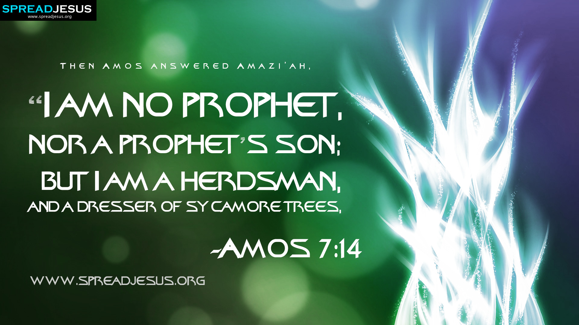 amos 7:14 bible quotes hd-wallpapers then amos answered