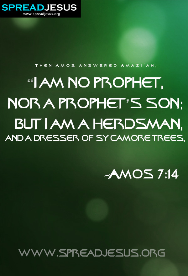 "I am no prophet-Amos 7:14 BIBLE QUOTES HD-WALLPAPERS,FACEBOOK TIMELINE COVERS,BIBLE QUOTES IMAGES Then Amos answered Amazi'ah, ""I am no prophet, nor a prophet's son; but I am a herdsman, and a dresser of sycamore trees, -Amos 7:14"