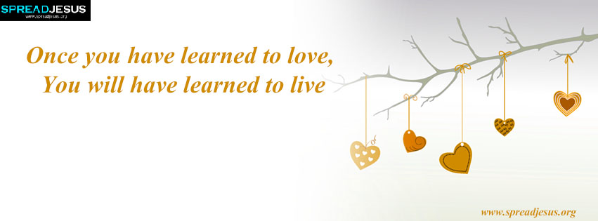 learned to love learned to live facebook cover free download