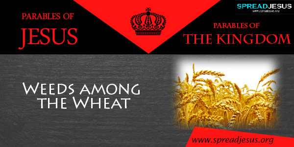 PARABLES OF JESUS The Parable of Weeds among the Wheat