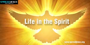 Life in the Spirit - Romans 8:1-17