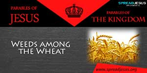 PARABLES OF JESUS -  The Parable of Weeds among the Wheat