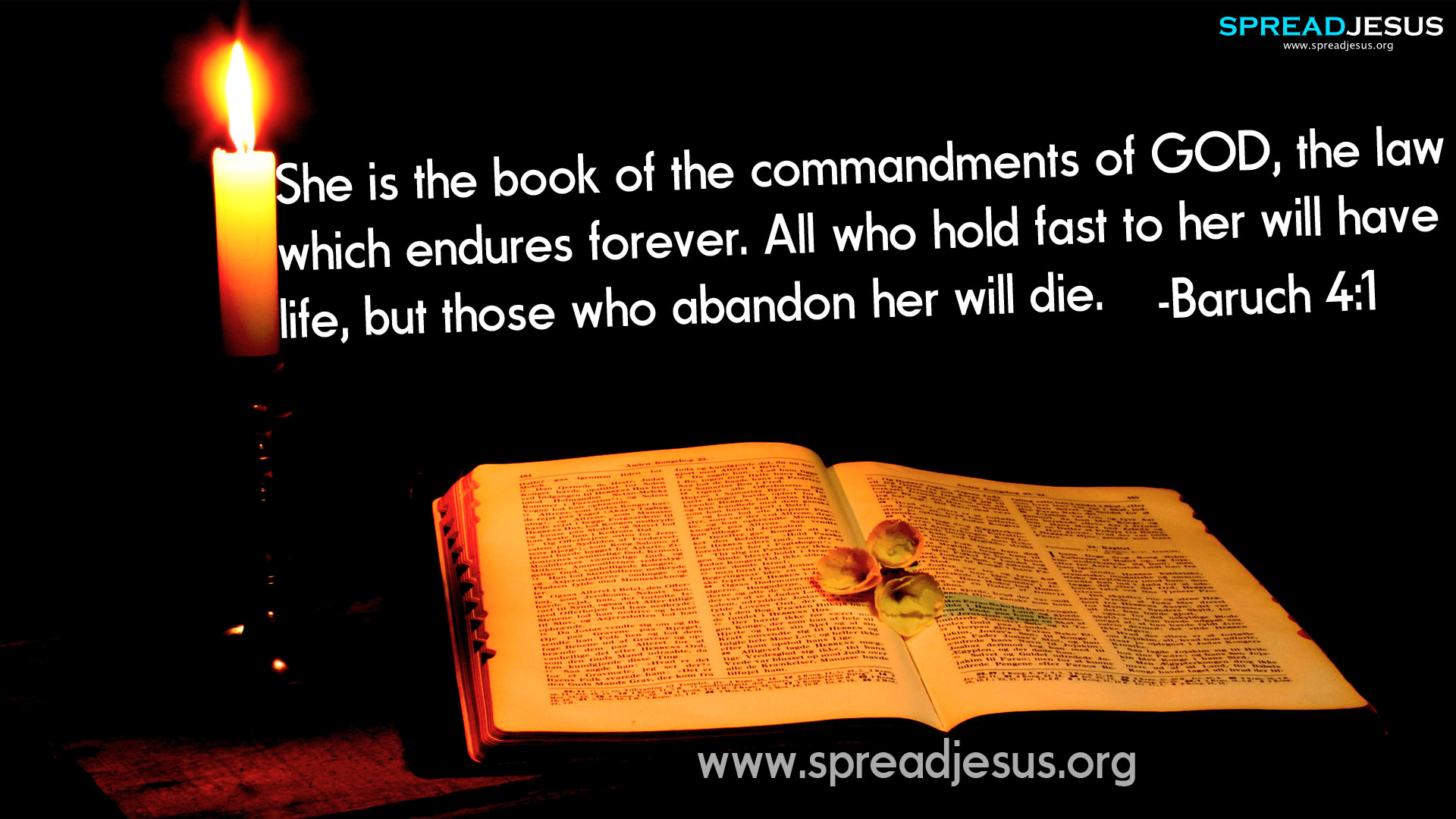 CHRISTIAN HD WALLPAPERS: HOLY BIBLE QUOTES :Baruch 4:1-She is the book of the commandments of GOD, the law which endures forever.All who hold fast to her will have life, but those who abandon her will die. -Baruch 4:1