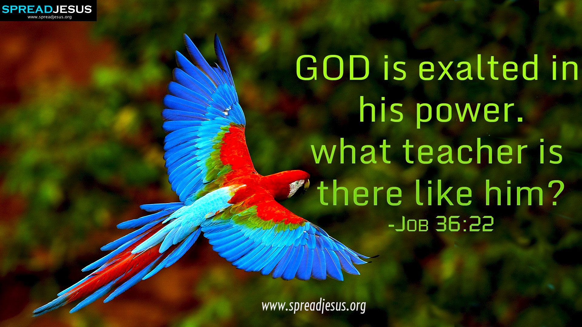 CHRISTIAN HD WALLPAPERS: HOLY BIBLE QUOTES : Job 36:22-GOD is exalted in his power. what teacher is there like him? -Job 36:22
