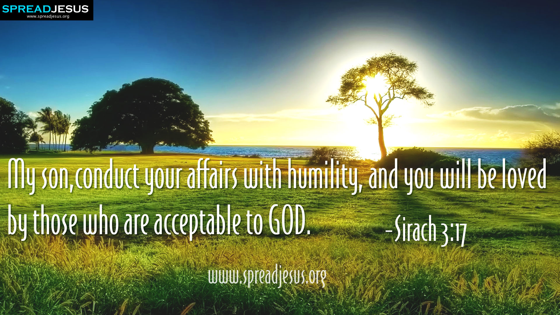 CHRISTIAN HD WALLPAPERS: HOLY BIBLE QUOTES : Sirach 3:17-My son,conduct your affairs with humility, and you will be loved by those who are acceptable to GOD. -Sirach 3:17