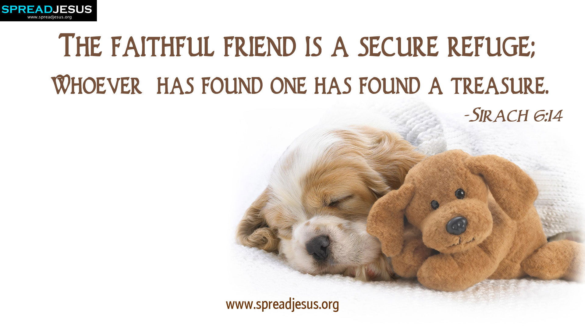 CHRISTIAN HD WALLPAPERS: HOLY BIBLE QUOTES : Sirach 6:14-The faithful friend is a secure refuge; whoever has found one has found a treasure. -Sirach 6:14