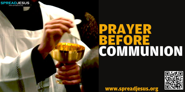 PRAYER BEFORE COMMUNION O my God, I firmly believe that you are truly present in the Holy Eucharist.-spreadjesus.org