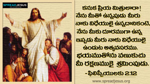 Telugu Bible Quotes HD-Wallpapers PHILIPPIYULAKU 2:12