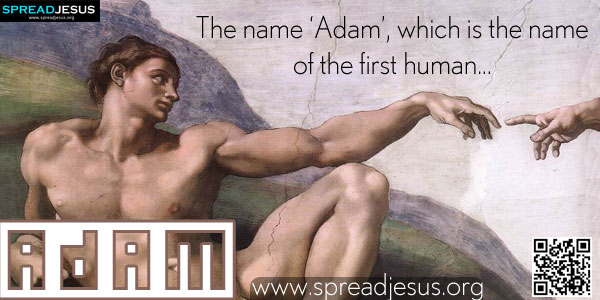 ADAM The name 'Adam', which is the name of the first human, is also the common Hebrew word for 'man', both man the individual and the human race as a whole.
