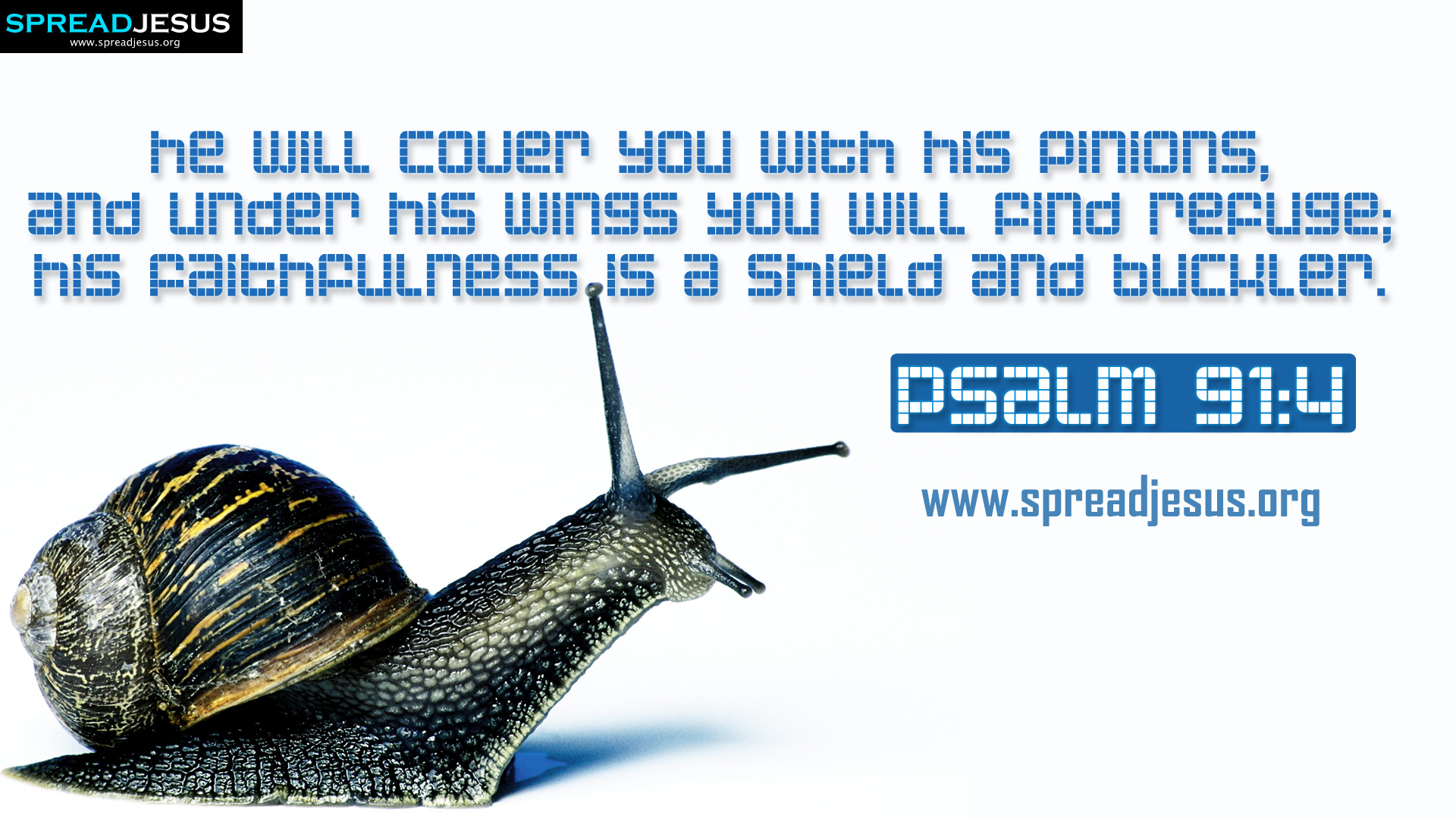 Psalm 914 Bible Quotes Hd Wallpapers Free Download