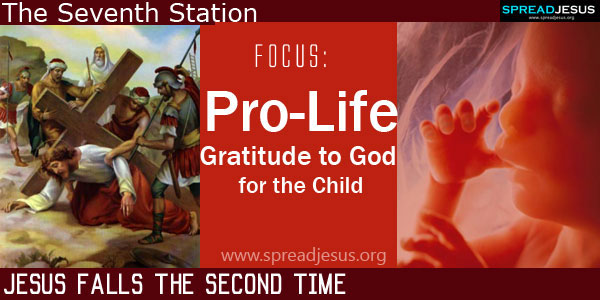 Jesus falls the second time:Pro-Life-Gratitude to God for the Child:THE WAY OF CROSS The Seventh Station -spreadjesus.org