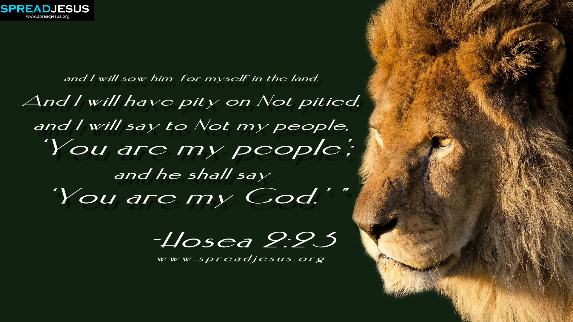 "BIBLE QUOTES HD-WALLPAPERS -and I will sow him for myself in the land. And I will have pity on Not pitied, and I will say to Not my people, ""You are my people""; and he shall say ""You are my God.""-Hosea 2:23"
