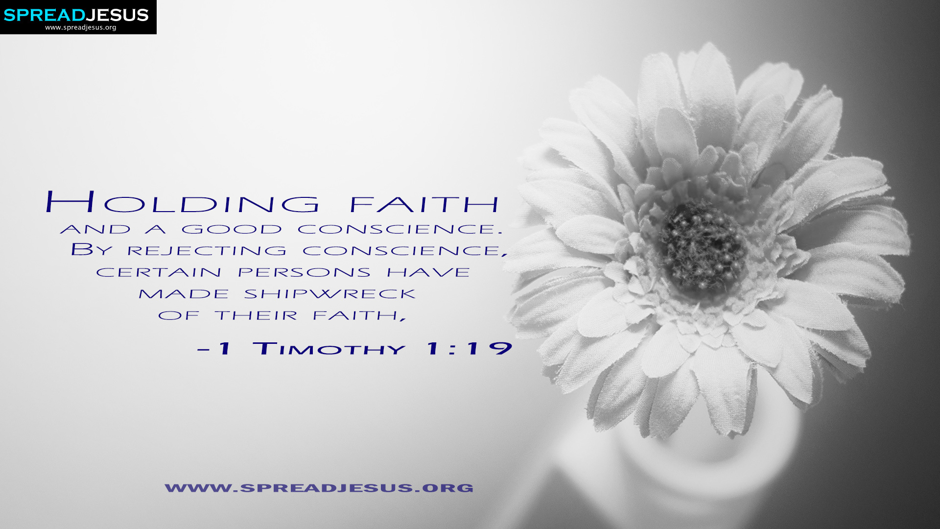 Holding faith 1 Timothy 1:19  Bible Quotes HD Wallpapers Download