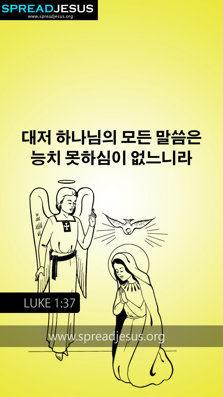KOREAN BIBLE QUOTES LUKE 1:37 WHATSAPP-MOBILE WALLPAPER