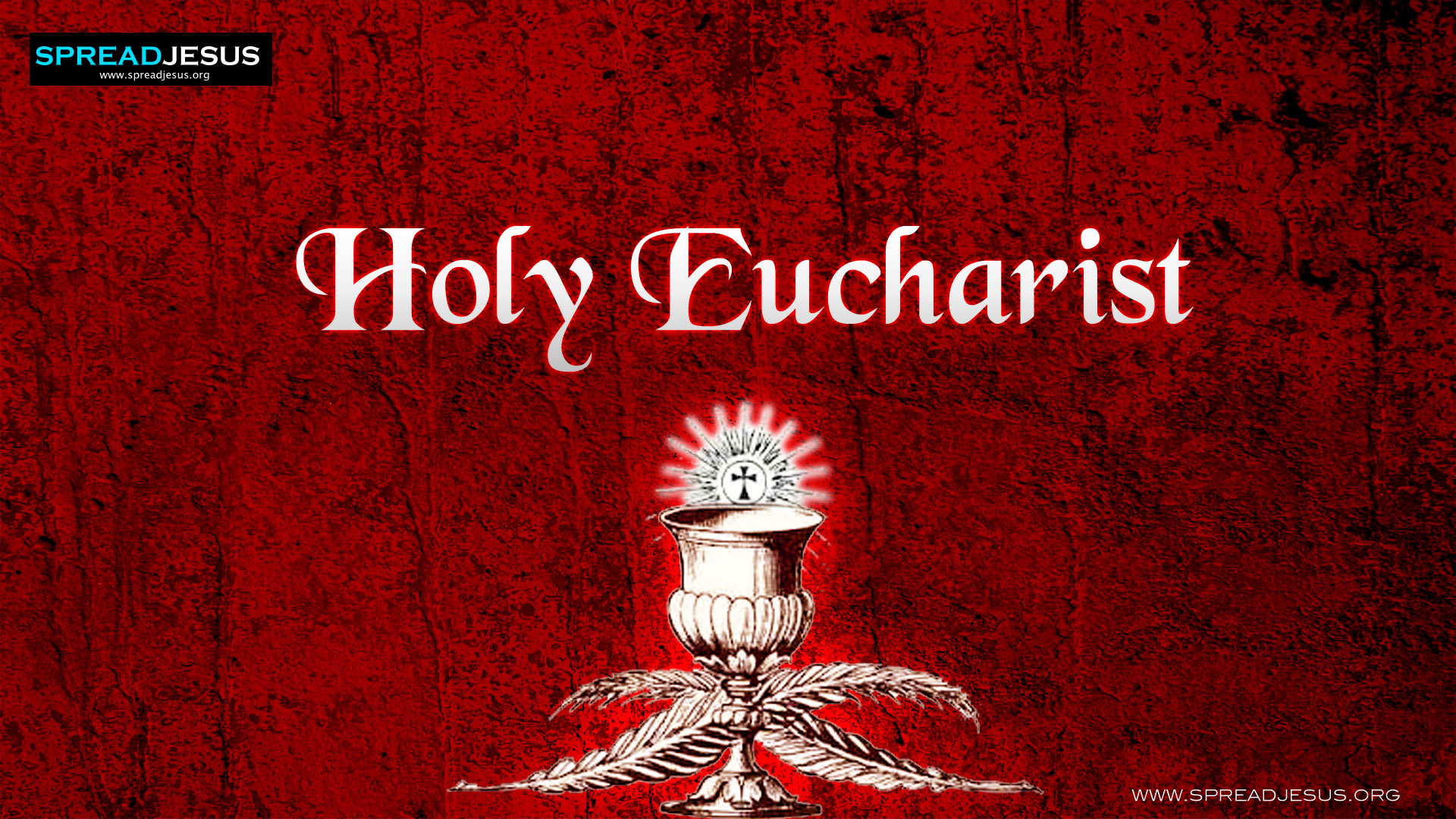 EUCHARIST-The seven sacraments of the church Through Eucharist, we are united with the Lord's Body and Blood.