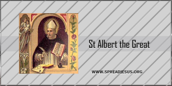 Catholic Saint St Albert The Great Bishopconfessor Doctor Of The