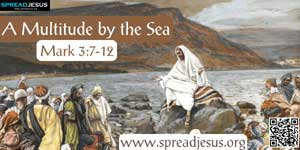 A Multitude by the Sea  Mark 3:7-12