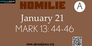 HOMILIE  January 21 Matthew 13: 44-46
