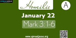 HOMILIE January 22