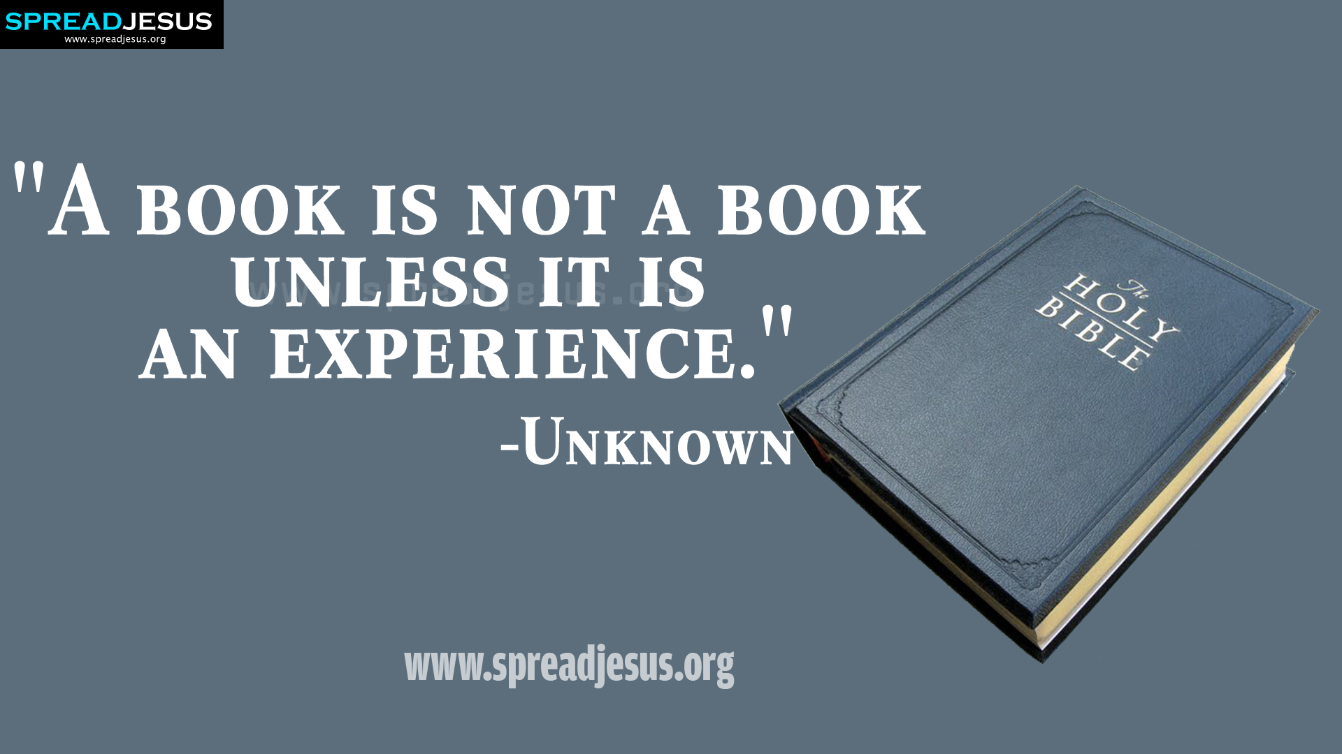 Hd wallpapers inspiring quotes on book reading hd wallpapers publicscrutiny Image collections