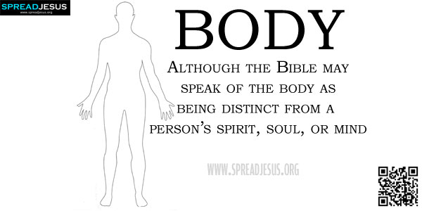 BODY Although the Bible may speak of the body as being distinct from a person's spirit, soul, or mind (Micah 6:7; Matt 10:28; Rom 7:23-25),