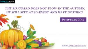 BIBLE QUOTES Proverbs 20:4