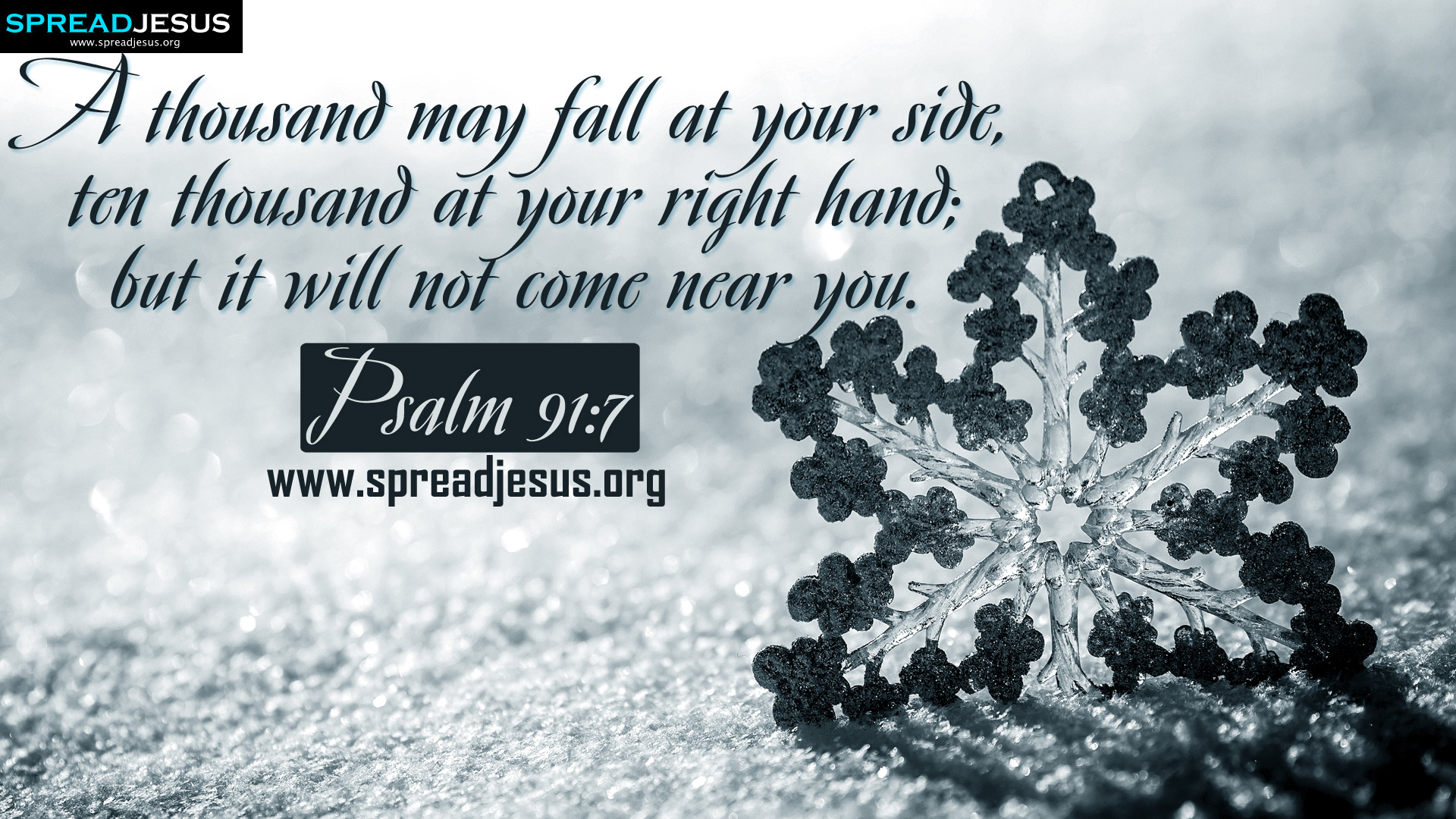 Psalm 91:7 BIBLE QUOTES HD-WALLPAPERS FREE DOWNLOAD