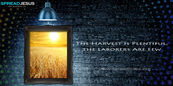 The Harvest Is Plentiful the Laborers Are Few