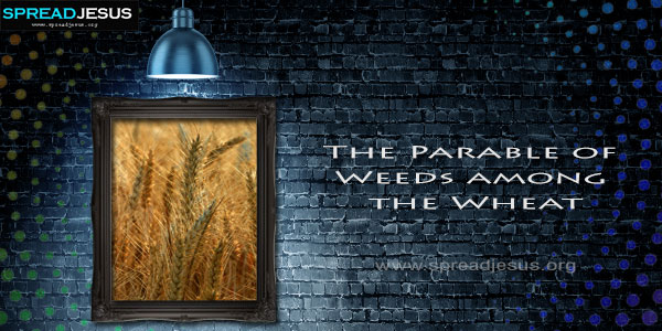 The Parable of Weeds among the Wheat